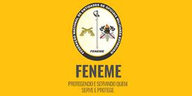 PORTFÓLIO DA FENEME